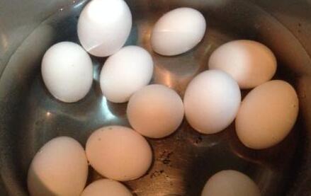 鸽子蛋的正确煮法你知道吗?