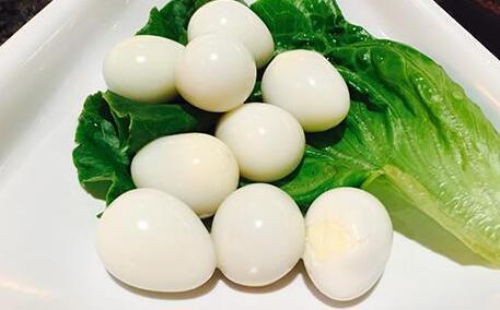 哪些人不能吃鸽子蛋有哪些说法?