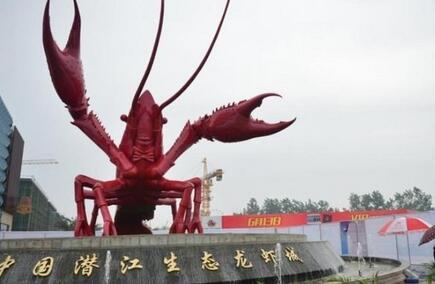 湖北哪里有养殖小龙虾加盟