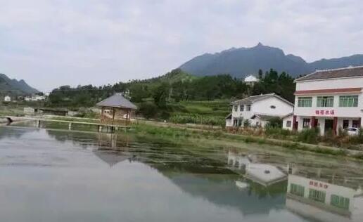 南京小龙虾养殖加盟多少钱?