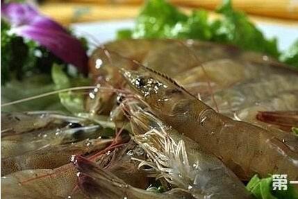 基围虾的养殖方法有哪些?