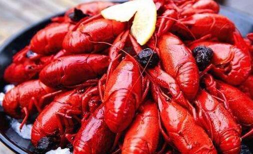 目前养殖小龙虾批发一斤多少钱?