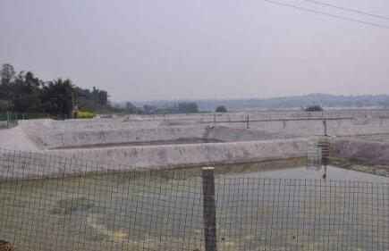 一亩地泥鳅养殖利润有多少?
