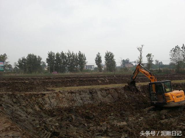 泥鳅养殖的池塘要怎么建?