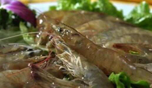孕妇到底能不能吃基围虾吗?