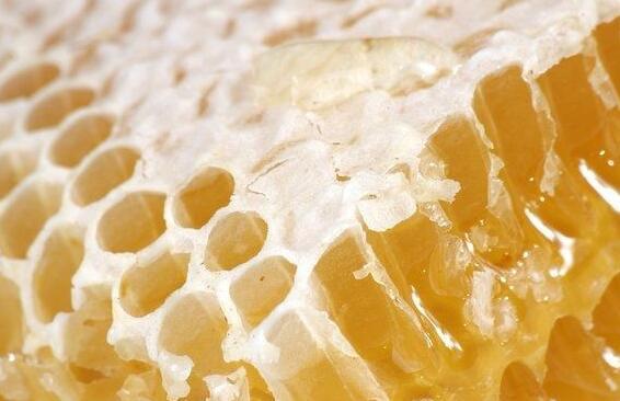 蜂巢的作用与功效到底有哪些?