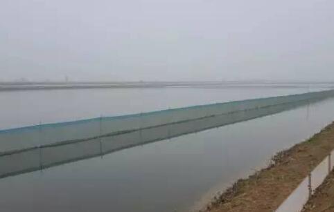 2018湖北潜江小龙虾发展史及养殖优势都有哪些?