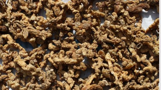 黄精种植用什么肥料经济效益好?
