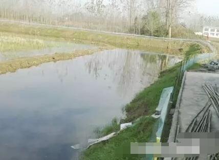 刚刚挖好的小龙虾池塘(稻田)改造图片?