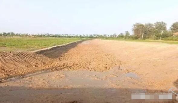 稻田或不要的鱼塘怎么改造才