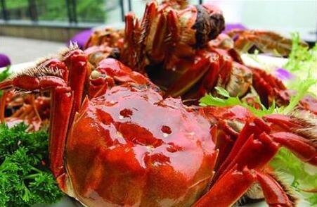 大闸蟹一般什么季节有?