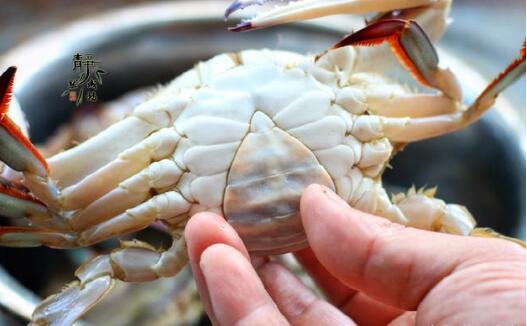 大闸蟹的做法蒸多久才可以吃?