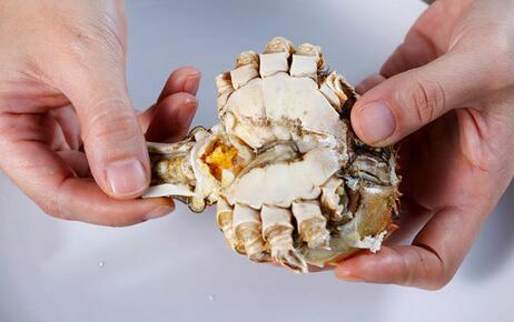 大闸蟹究竟哪些部位不能吃?