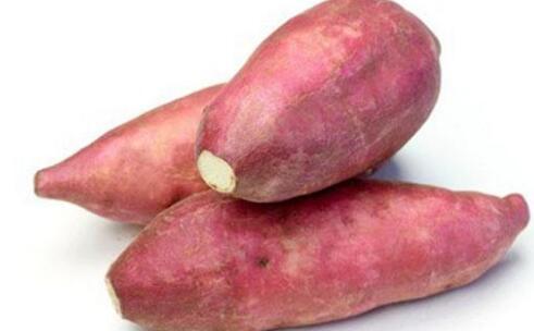 红薯和番薯有什么区别?