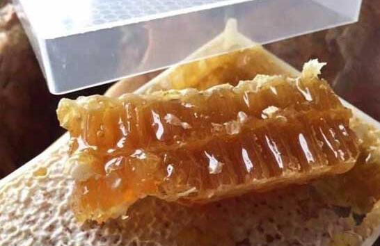 常见的蜂巢蜜可以造假吗?