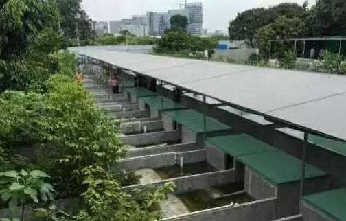 鳄鱼龟养殖池设计图大全