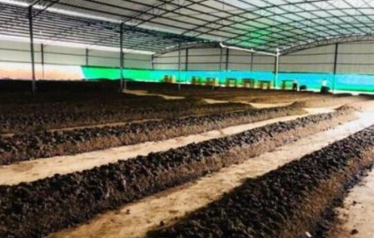 2019蚯蚓养殖方法主要有哪些模式?