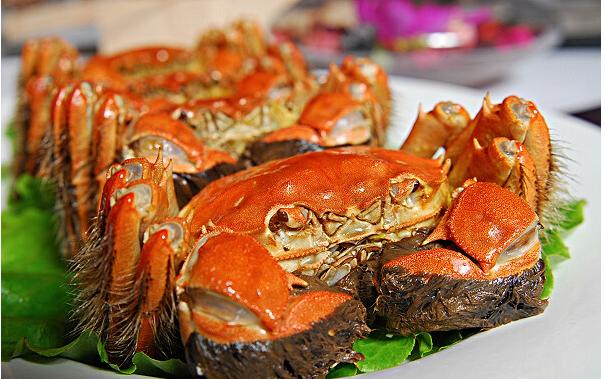 吃大闸蟹什么季节吃才是口感最好的?