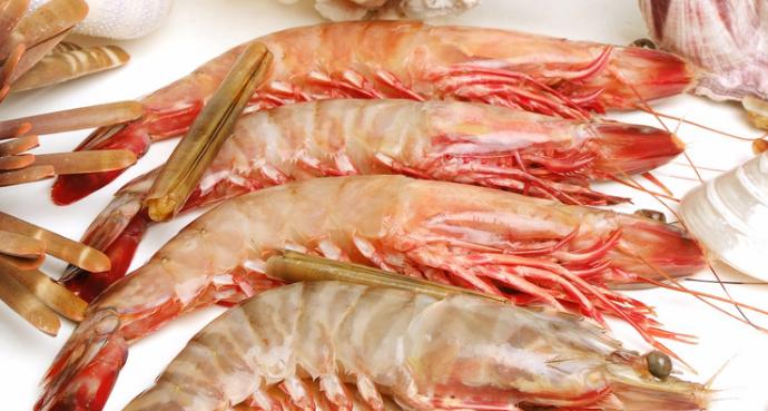 明虾和基围虾哪个更营养,价值更高呢?
