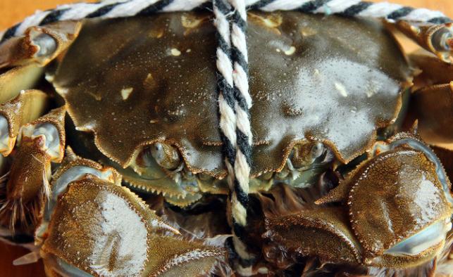 1月份还有阳澄湖大闸蟹吗?