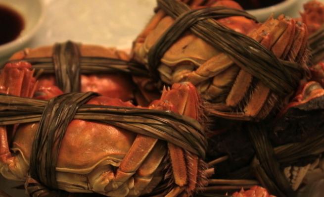 大闸蟹养殖水位要多高?