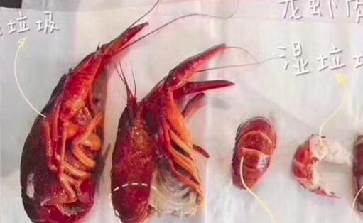 小龙虾壳硬好还是软好?