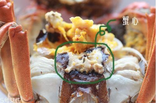 螃蟹哪里不能吃高清图大全