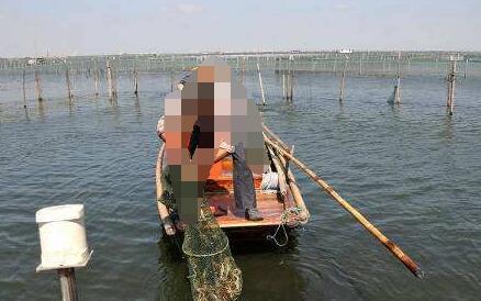 2020年阳澄湖大闸蟹开捕时间一般是什么时候?