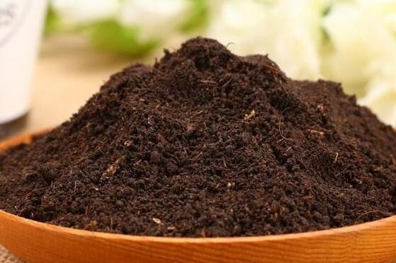 营养土究竟是什么土?