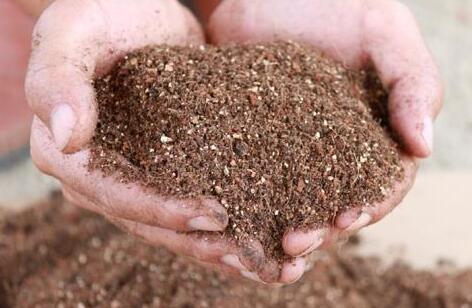 通用土和营养土有什么区别?