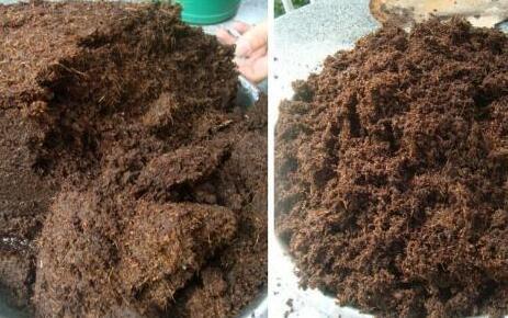 椰糠可以和营养土一起混合吗?