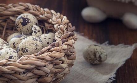 鹌鹑蛋一天吃几个合适?
