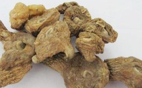 市场上的野生黄精多少钱一斤?