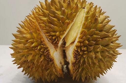 榴莲是什么季节的水果?