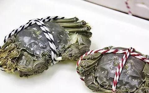阳澄湖大闸蟹几月份吃最好?