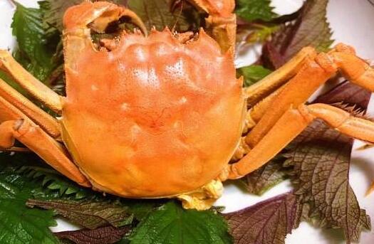 蒸螃蟹时紫苏包放水里还是和螃蟹放一起?