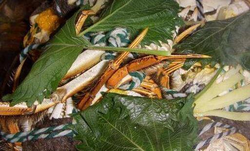 螃蟹放了一晚上死了还能吃吗?