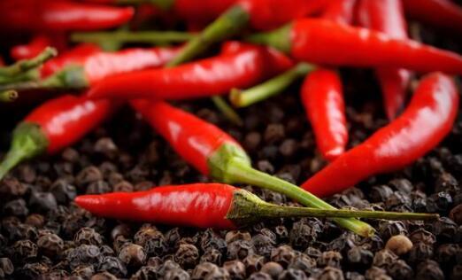 小米椒什么时候大量上市?