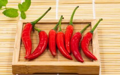 小米椒的功效与作用主要有哪些?