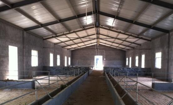 小尾寒羊羊舍建设标准有哪些?